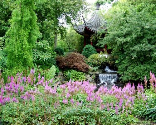 Chinese tuin, Blijdorp