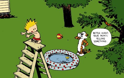 Calvin and Hobbes - strip Bill Watterson