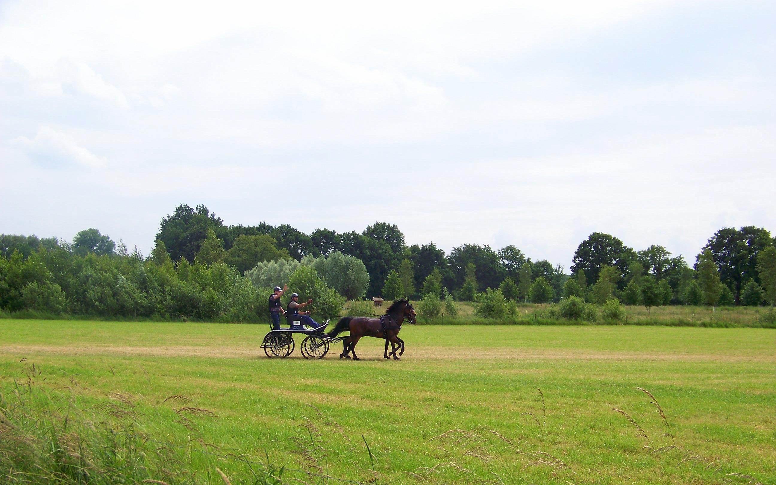 Paard-en-wagen Moerenburg, Tilburg
